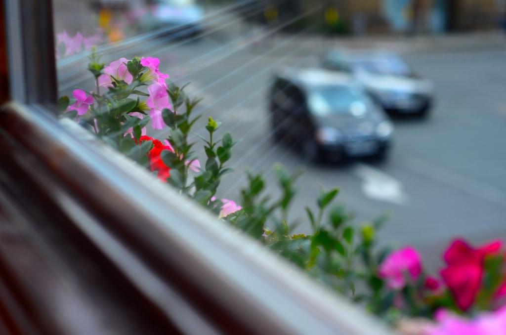 *Flowers PoW road